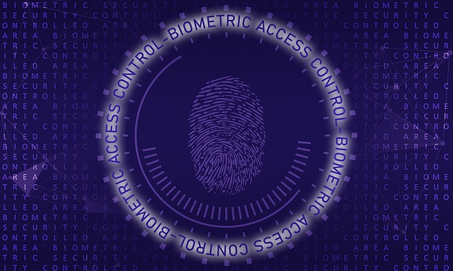 Biometric Security